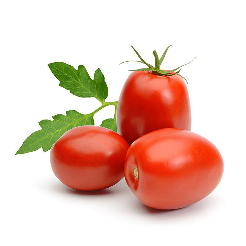 tomata-white